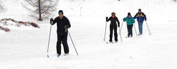 ski-crop